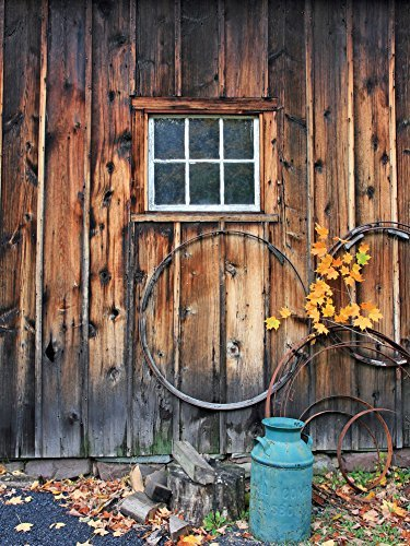 Barn with Turquoise Milk Bucket Backdrop